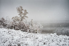 得到一个冷的冬天 免版税库存照片