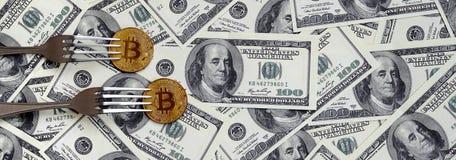 得到新的坚硬叉子变动,在叉子下的物理金黄Crytocurrency硬币的Bitcoin在美元背景 Blockchain Tra 图库摄影