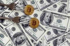 得到新的坚硬叉子变动,在叉子下的物理金黄Crytocurrency硬币的Bitcoin在美元背景 Blockchain Tra 库存照片