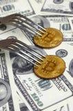 得到新的坚硬叉子变动,在叉子下的物理金黄Crytocurrency硬币的Bitcoin在美元背景 Blockchain Tra 免版税库存图片