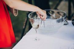 得到时髦的香槟饮料的妇女冰在婚礼桌上 免版税库存照片