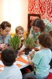 得知植物的孩子在车间 免版税图库摄影