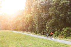 循环在一条道路的一个森林里的父亲和儿子在与美丽的照明设备透镜的日落飘动 免版税库存图片