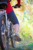 循环在森林里的女孩 免版税库存图片