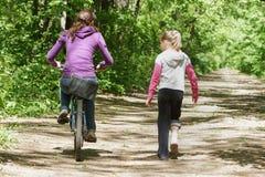 循环在森林里 免版税图库摄影