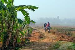 循环工作在领域的印地安农村人 图库摄影