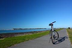 循环沿海滩前纳皮尔, NZ 免版税库存照片