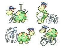 循环的乌龟 免版税库存图片