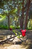 循环的旅游业自行车在有paniers的西班牙 库存图片