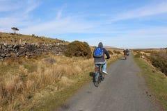 循环绿色西部林荫道路,县马约角,爱尔兰 图库摄影