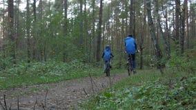 循环通过森林的骑自行车者背面图在一秋天天 影视素材
