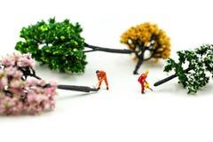 微型人民:使用锯的工作者砍大山毛榉树,砍伐森林概念 库存照片