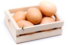微型人民:妇女坐鸡蛋、想法或者复活节天骗局 库存照片