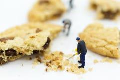 微型人民:工作者是被击碎的曲奇饼 面包店企业概念的图象用途 免版税库存图片