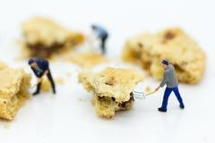 微型人民:工作者是被击碎的曲奇饼 面包店企业概念的图象用途 库存图片