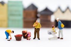 微型人民:购物在市场上购买必要的事 销售的,企业概念图象用途 免版税库存照片