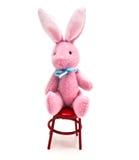 微型兔宝宝的椅子 图库摄影