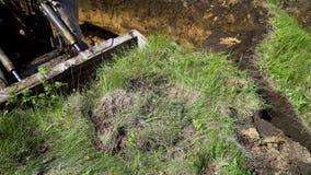 微型在象草的土壤的装载者桶开掘的沟槽看法在地球工作期间 股票录像