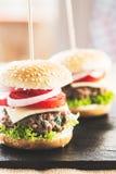 微型汉堡 库存照片