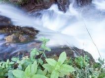 微型瀑布细节  图库摄影
