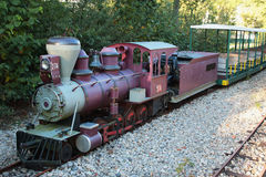 微型火车 库存图片