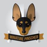 微型短毛猎犬 向量例证