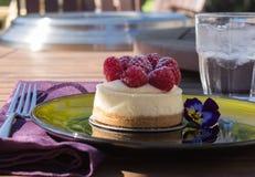 微型莓乳酪蛋糕 免版税库存图片