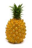 微型菠萝 免版税图库摄影