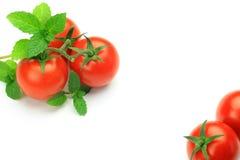 微型蕃茄和薄菏 图库摄影