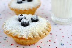 微型蛋糕用莓果和糖粉 免版税库存照片