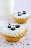 微型蛋糕用莓果和糖粉 库存照片