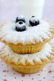 微型蛋糕用莓果和糖粉 图库摄影