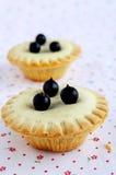 微型蛋糕用莓果 免版税库存图片