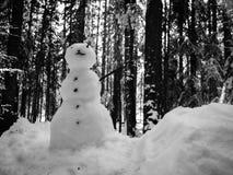 微型雪人 免版税库存图片