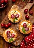 微型馅饼用新鲜的樱桃和香草乳蛋糕和焦糖,在一张木桌上的可口点心 免版税库存照片