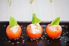 微型caprese手抓食物开胃菜,与蕃茄蓬蒿和mozza 免版税库存图片