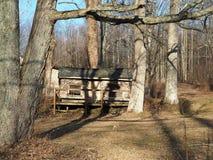 微小的土气议院在森林里 免版税库存照片