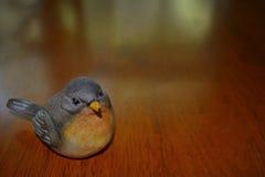 微小的小的鸟坐富有的黑暗的木桌背景 免版税图库摄影