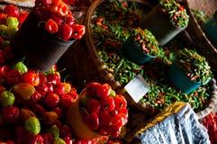 微小的新鲜的红色绿色和橙色哈瓦那人辣椒 免版税库存照片