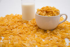 微小的杯牛奶和微小的杯Pil围拢的玉米片 库存照片