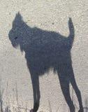 微小的狼人 免版税库存照片