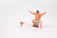微小相扑摔跤手 免版税库存照片