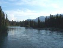 微明的河 库存照片