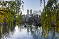 微明的Central Park湖 免版税库存图片