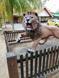 微暗的狮子 库存照片