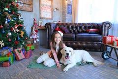 微笑和坐的拥抱与狗的俏丽的女孩孩子在演播室 免版税库存图片