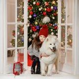微笑和拥抱在C的美丽的小女孩一条大白色狗 免版税库存照片