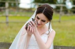 微笑和拿着在公园夏天自然的少妇新娘逗人喜爱的兔子室外 白色婚礼礼服,绿色背景 免版税库存图片