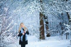 微笑和走在街道的美丽的女孩 美好的多雪的冷的冬天 假日心情 免版税图库摄影
