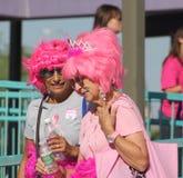 微笑在乳腺癌步行期间的姐妹 免版税库存照片